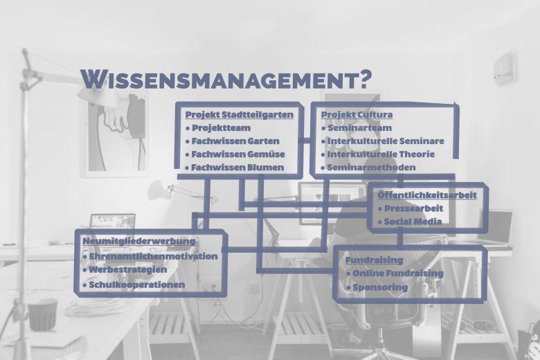 """Unter der Überschrift """"Wissensmanagement"""" stehen verschiedene Bereiche der Non-Profit-Organisation, etwa Projekte und Öffentlichkeitsarbeit. Diese Bereiche sind wiederum aufgegliedert. Die Grafik zeigt so, dass eine Organisation verschiedene Bereiche hat, die beim Wissensmanagement betrachtet werden müssen."""